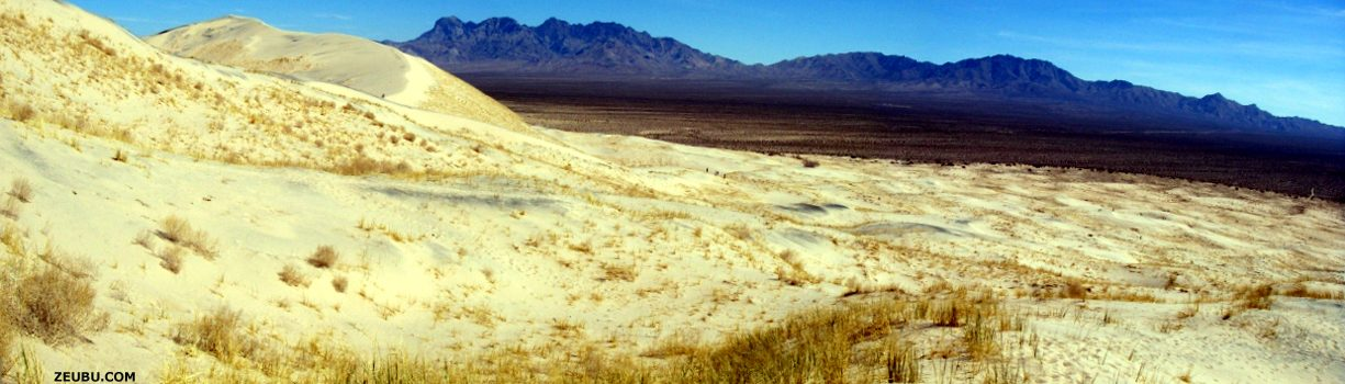 californie-dune_de_sable_sur_la_route_de_williams.jpg